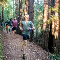 Huddart Park—Woodside